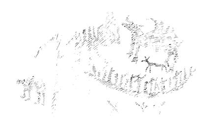 Dewdney's sketch of Mazinaw's Face II