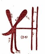 Mazinaw Rabbit Man pictograph