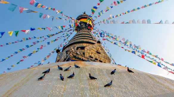 Swayambhunath - birds of stupa