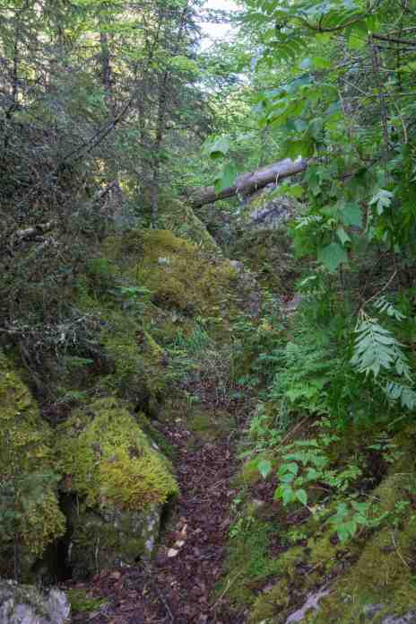 a bit of the upper section of the Diablo Portage Trail
