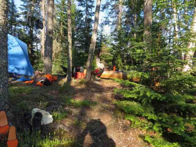 the Cairngorm campsite