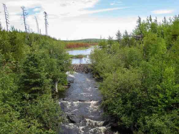 The Steel River as it leaves Esker Lake
