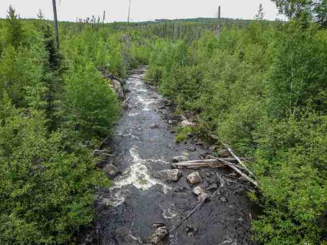 the view looking NW from the Esker Lake logging Road bridge