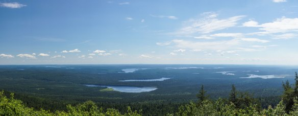 panorama - looking east from Maple Mountain top