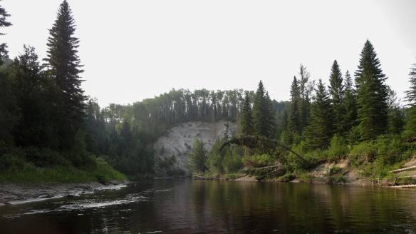 Steel River banks between Rainbow Falls and Deadhorse Bridge