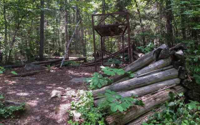 the remains of the ranger's cabin at the start of the Maple Mountain trail