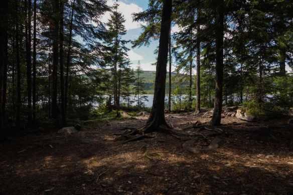 Tupper Lake campsite