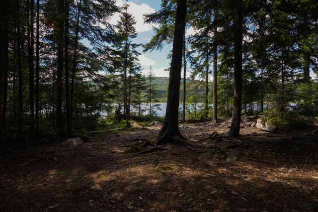 Tupper Lake campsite