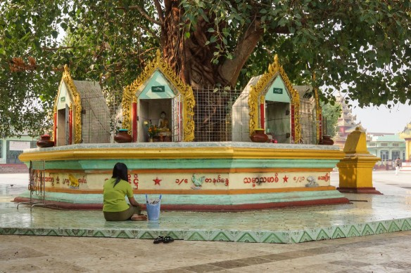 a Bodhi Tree with eight shrines around it - a mini planetary posts area