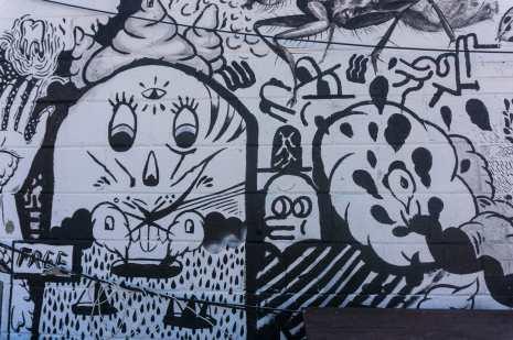 black and white panel - beaver