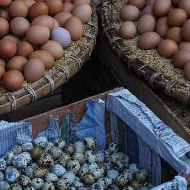 box and trays of eggs