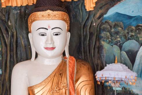 close-up of Buddha figure under Bodhi Tree