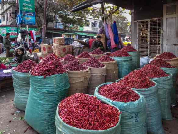 cornering the market for peppers