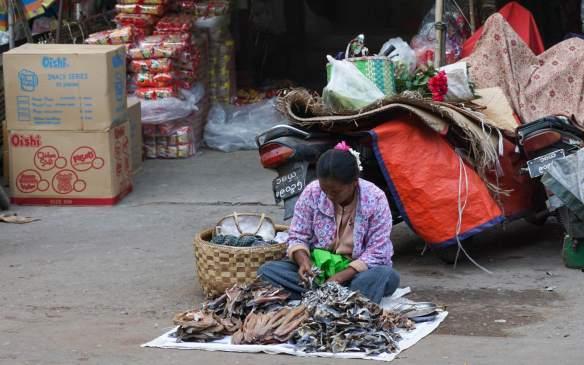 Zay Cho fish for sale