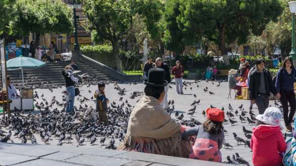pigeons and passers by at Plaza Murill in La Paz