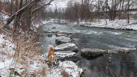 the Don River on its way to lake Ontario