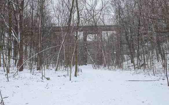 the rail tressle crossing Moore Park ravine
