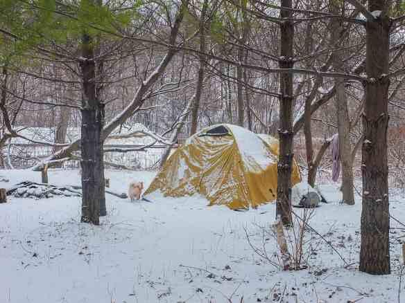 Viggo checks out the Don Valley camper