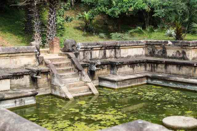 a view of the steps and spout of Polonnaruwa's Kumara Pokuna (Royal Baths)