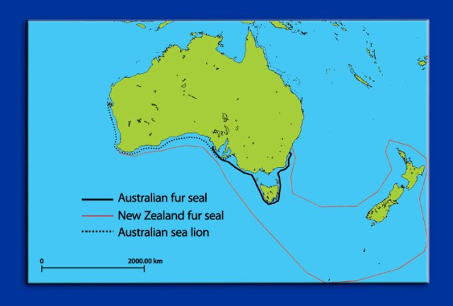 australian_seal_species_map