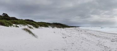 beach sand and cloud N of Bicheno