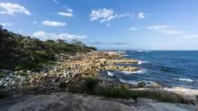 Bicheno shore -
