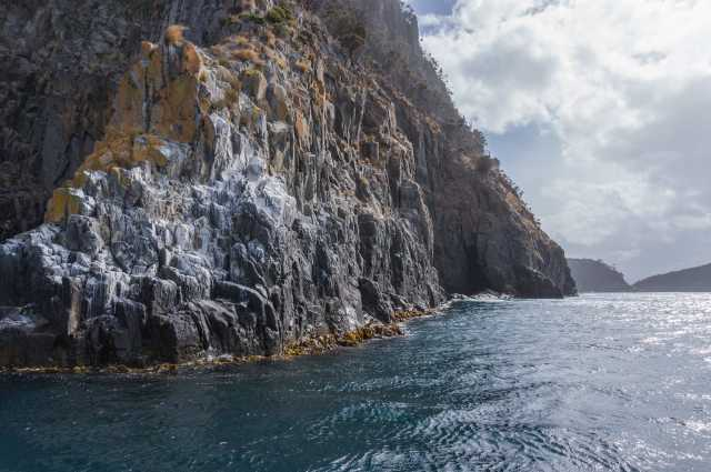 bird poop covers the perches on a cliff face