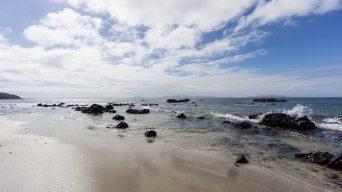Life is a beach - in Tasmania!