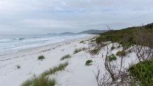 stretch of beach N of Bicheno