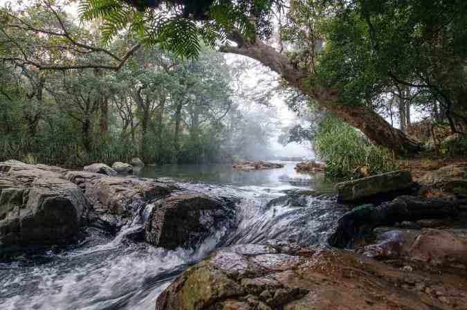 Knuckles Range - The Thelgamu Oya at dawn - take two