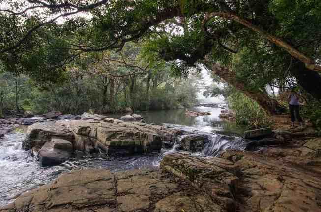 Knuckles Range - The Thelgamu Oya at dawn