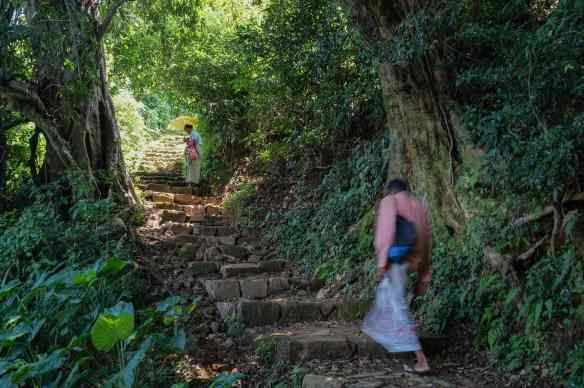 our villager guide in motion up a stone path