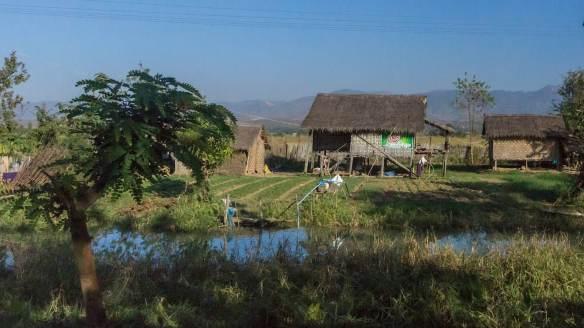 farmhouse north of Nyaung Shwe