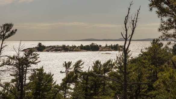 a view of Sly Fox Island from Martin's Island