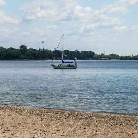 beach, sailboat, and CN Tower