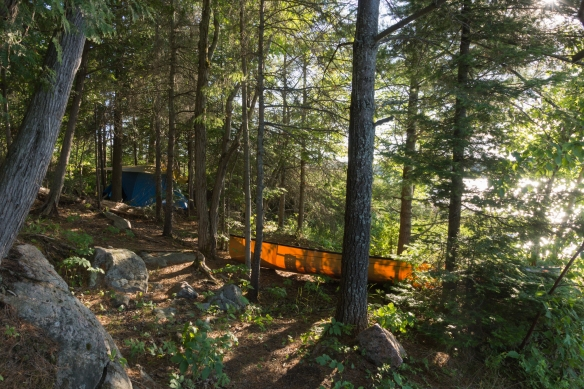 Collins Inlet campsite - the best of five we looked at