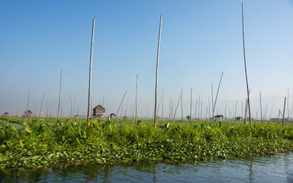 a floating island on Inle Lake