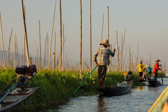 Intha floating garden on Inle Lake