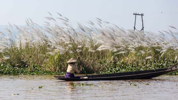 Intha woman in boat pushing upwind on Inle Lake