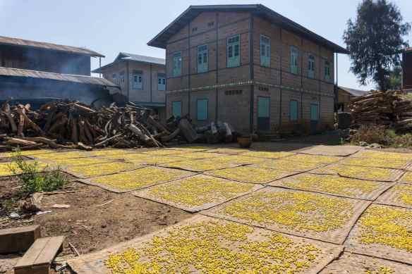 Khaung Daing - drying mats cover yard