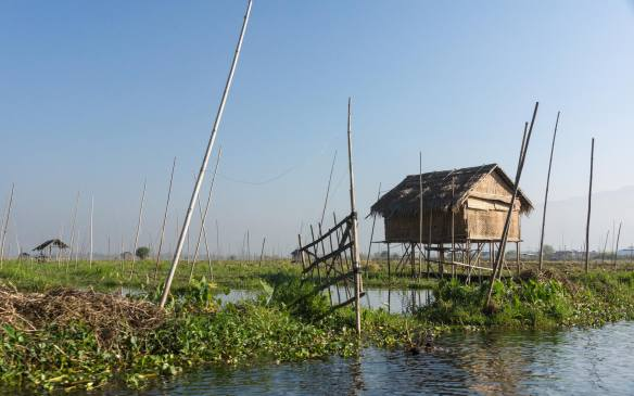 stilt hut and floating farms on Inle Lake