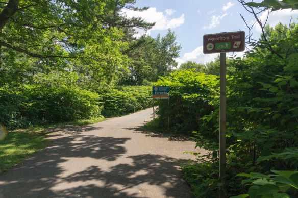 the Waterfront Trail on the Lake Ontario lakeshore