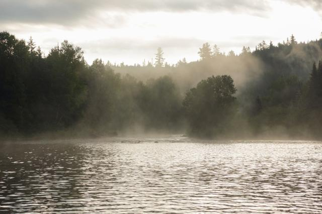 morning mist below Tall Pine Rapids ont he Coulonge