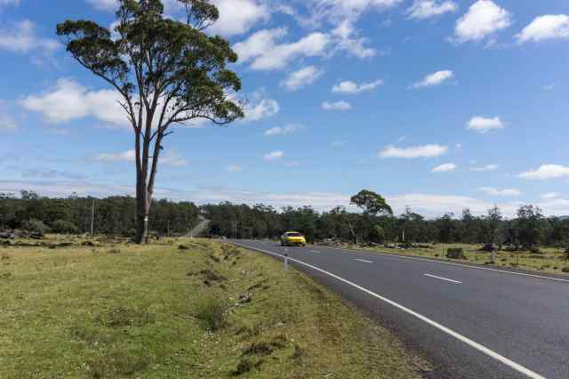 a flat stretch of road - the C136 to Cradle Mtn.