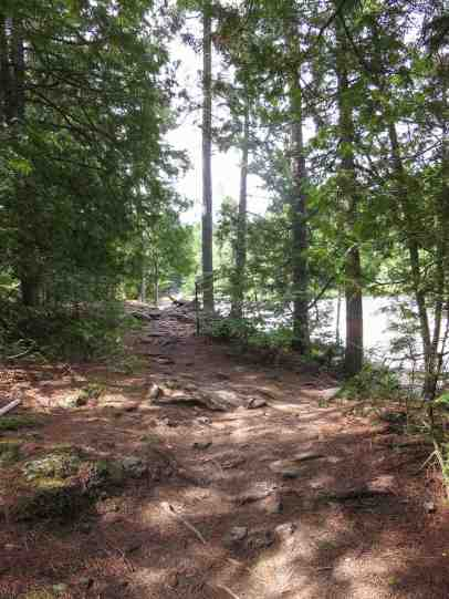 looking back at the first bit of the Cedar Island portage trail
