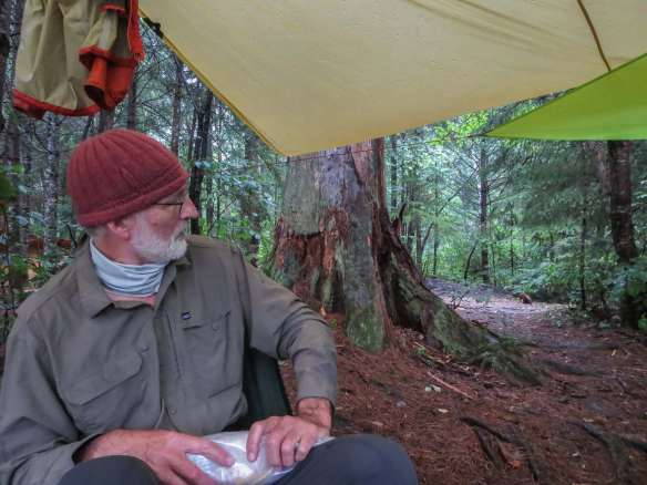 max-looking-over-our-tarp-job-at-tall-pine-camp