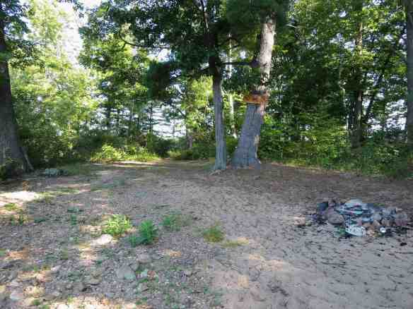 potential emergency campsite on the Ottawa - island across river from Bonnechere River mouth