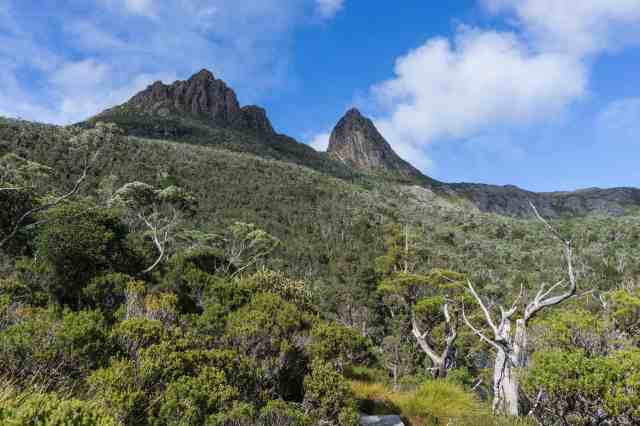 a view of Cradle Mountain from the trail at the top end of Dove Lake