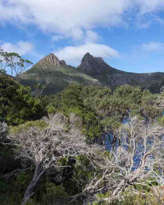 a view of Cradle Mtn from the east side of Dove Lake .jpg