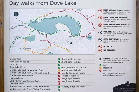 dove-lake-trail-map